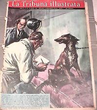LA TRIBUNA ILLUSTRATA 26 agosto 1962 Cani dallo psichiatra Marco Praga Bomba di