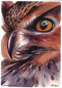 original painting A4 398LM art by samovar Watercolor modern animal bird owl