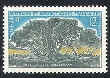 FSAT/TAAF 1963 Phylica/New Amsterdam Island/Plant/Nature/Tree 1v (n29326)