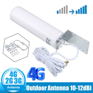 High Gain 12dBi Outdoor Dual SMA Male Antenna -  3G 4G LTE Router Signal Booster