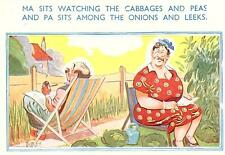 E Marks/Comicard Comic postcard Deck Chair no 2260   unused very/good
