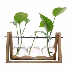 Plant Terrarium with Wooden Stand Glass Vase Holder for Home Decoration,Sci