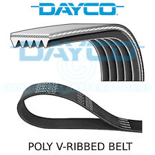 Dayco Poly V Belt - Auxiliary, Fan, Drive, Multi-Ribbed Belt - 5 Ribs - 5PK825