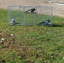 1 DOUBLE ENTRY MAGPIE TRAP,  LARSEN READY TO USE,£52.25  INC P&P BEST BUY