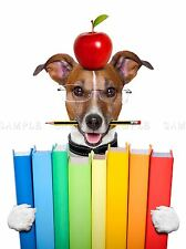 Jack Russell Dog libri Apple insegnante PHOTO art print poster foto bmp2037a