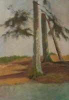 Olga POTTHAST, Hohe kräftige Baumstämme in der Landschaft, um 1900, Öl