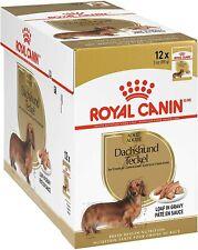 Royal Canin Breed Health Nutrition Dachshund Wet Dog Food