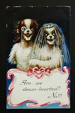 WW1 Postcard Dogs Getting Married Wedding Dress Kitson Rd Camberwell London SE5