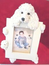 poodle white  picture frame   28