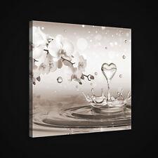 CANVAS Wandbild Leinwandbild Bild ORCHIDEE KUNST WASSER HERZ TROPFEN 3FX2530O2