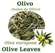 OLIVO Hojas de Olivo ½ oz Hierbas OLIVE Leaf ½ oz Herbs Olea europaea