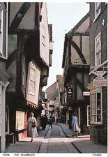 Yorkshire Postcard - The Shambles - York - Ref ZZ5087