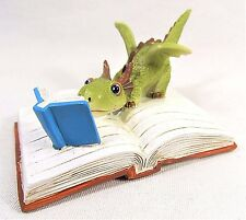 Dragon youngster reading a Book Fantasy decor mini figurine
