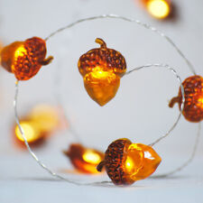 LED String Lights Acorn Light String Battery Powered Fairy Light Xmas Decor #CF7