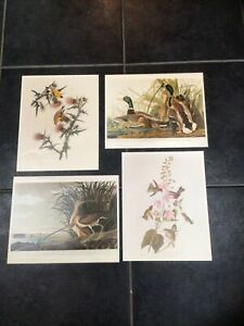 AUDUBONS BIRDS OF AMERICA SET OF 4 PRINTS HUNTINGTON LIBRARY