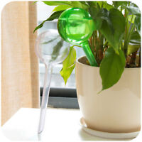 plant self watering bulb shape waterer globes automatic irrigation planter ca Hw