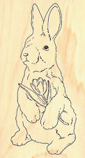 Bunny Rabbit Easter Wood Mounted Rubber Stamp Impression Obsession Easter NEW
