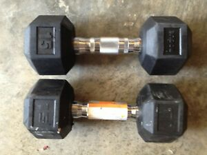 15 lb Dumbbells Rubber Coated Hex Pair Weight Set 30 lbs Cast Iron Dumbbells