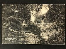 RP Vintage Postcard - Sussex #A21 - Drifting Well, Fairlight Glen, Hastings