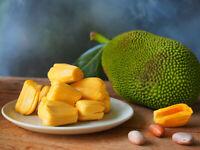 50pcs Orange Jack Fruit Seeds Ceylon Rare Honey Jack Fruit Viable Seeds For Grow