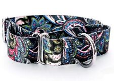 Small Paisley Martingale Dog Collar With Matching Leash
