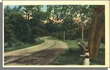 8016: 1940's USA Post Card - Scenic Country Two-Lane Road in Summer! Vintage