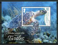 British Virgin Islands BVI Turtles Stamps 2017 MNH Underwater Life Pt 1 1v M/S