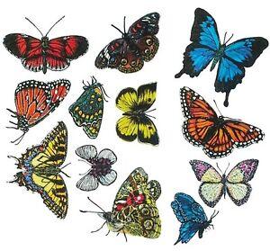 Tatouage Butterflies Dry rub Transfer