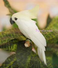 1:12 Dollhouse Miniature Pet Animal White Parrot Toy Garden PA016
