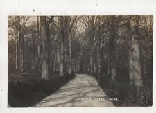 Tilgate Forest Crawley Sussex 1914 RP Postcard 644b