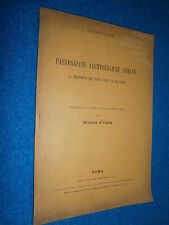 1907 __  PASSEGGIATE ARCHEOLOGICHE ROMANE SCAVI AL PALATINO
