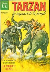TARZAN LE SIGNEUR DE LA JUNGLE #43 1973-BURROUGHS-FRENCH-HOGARTH ART FINE