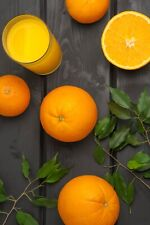 Grafted Nebo Sweet orange Live Tree (Fruit Soon) 2'- 3' Tall