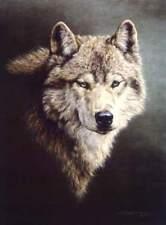 """Jorge Mayol """" Pathfinder """" # 610/950  Paper S/N W/CERT $250 Value Wolf"""