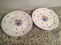 Used Provincial Bouquet Stoneware PBD-20 Dinner Plates Set Of 2