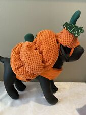 "Bootique Dog Pet Costume Pumpkin Hat M Medium New 15-17"" Halloween 2687301"
