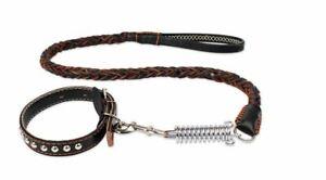 Hundehalsband Leine Welpenhalsband Leder Halsband kleine mittel Hunde Welpe