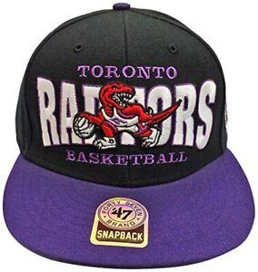 Toronto Raptors Black Block Two Tone Snapback Hat/Cap