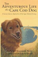 The Adventurous Life of a Cape Cod Dog: A Curious