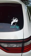 "Cane Corso Window Decal *4×5.5""* image only! Very sturdy car wrap vinyl!"