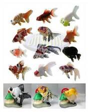 原色觀賞魚圖鑑 金魚1.5 Yujin goldfish aquarium fish in colour ver 1.5 12+3 Carassius auratus (frog insect)very rare