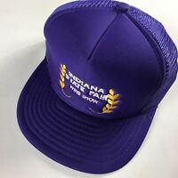 Indiana State Fair Snapback VTG Hat Wine Show Foam Front Trucker Purple Cap Indy
