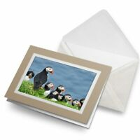 Greetings Card (Biege) - Puffins on Mykines Farow Islands  #16953