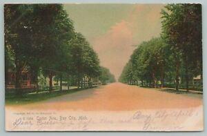 Bay City Michigan~Tree Lined Center Avenue~Vintage Postcard