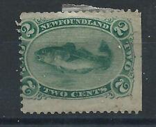 """Terre-Neuve N°21 (*) (MNG) 1866/71 - Poisson """"Morue"""""""
