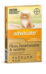 Advocate Flea & Worm Control for Cats under 4kg - 6 pack