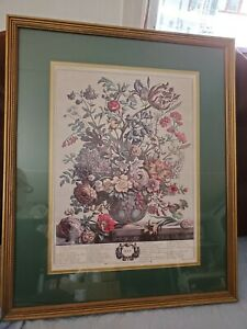 Vtg Robert Furber Henry Fletcher Twelve Months of Flower MAY Etching Print 23x19