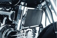 Valkyrie Front Chrome Radiator Mesh Accent ( B1-307 ) 1997-2003