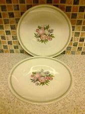 British Ridgway Pottery Dinner Plates