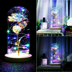 LED Galaxy Rose in Glass Beauty and the Beast Enchanted Dome Light Dinner Decor